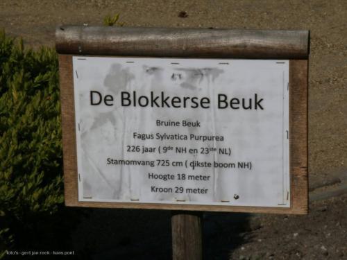 19 04 westerhout39